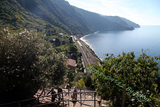 View Point Corniglia