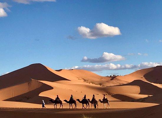 泰内雷撒哈拉沙漠之旅