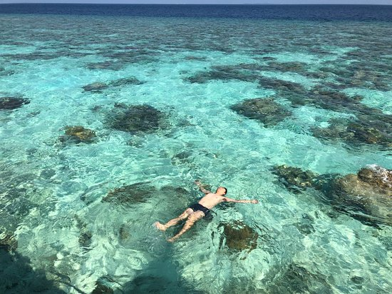 Raa Atoll: 房间里就是印度洋,水屋下楼梯就可以浮潜 snorkelling just outside of your room, you are already in the Indian Ocean!