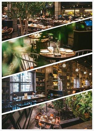 海棠树下音乐餐厅