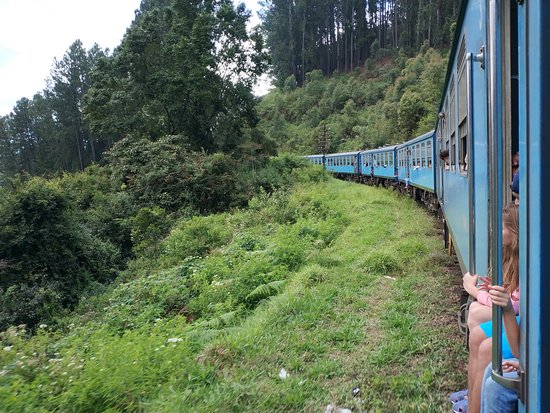 Private one Day Trip: Horton Plains and Pedro Tea Factory from Nuwara Eliya: train