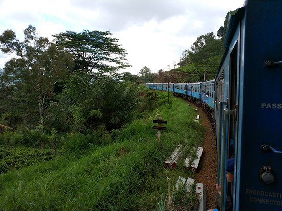 Private one Day Trip: Horton Plains and Pedro Tea Factory from Nuwara Eliya: gg