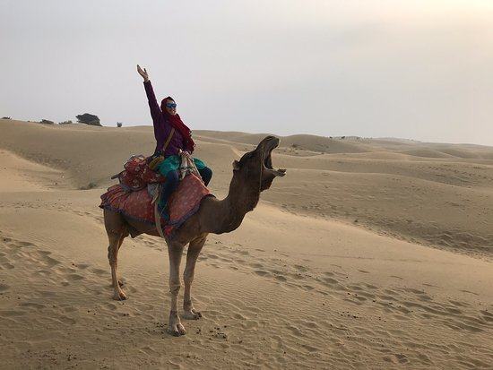 Great desert safari