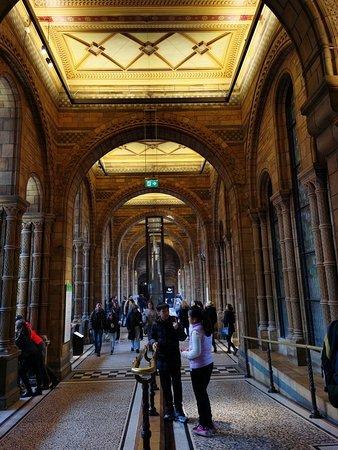 欧洲最大的历史自然博物馆.探索自然奥秘