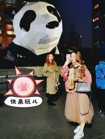 慕名而来,和大熊猫合影