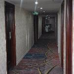 Qicai Business Hotel Nanning Daxue East Road
