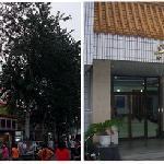 Xingjinglong Hotel