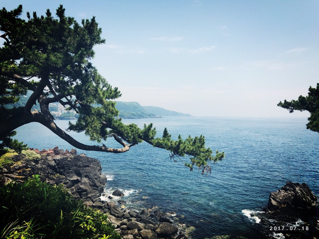 Jogasaki Coast (Ito, Japan): Top Tips Before You Go ...