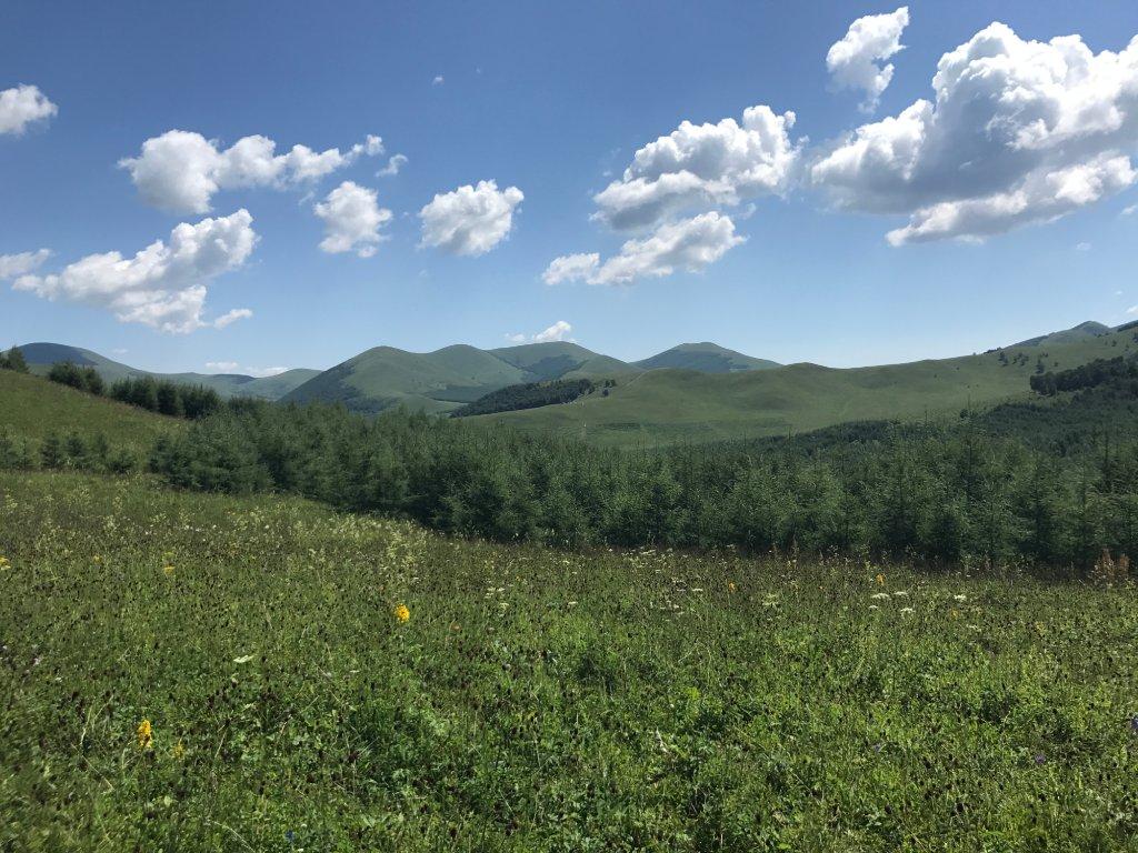 丰宁坝上草原有什么景点,好玩吗?