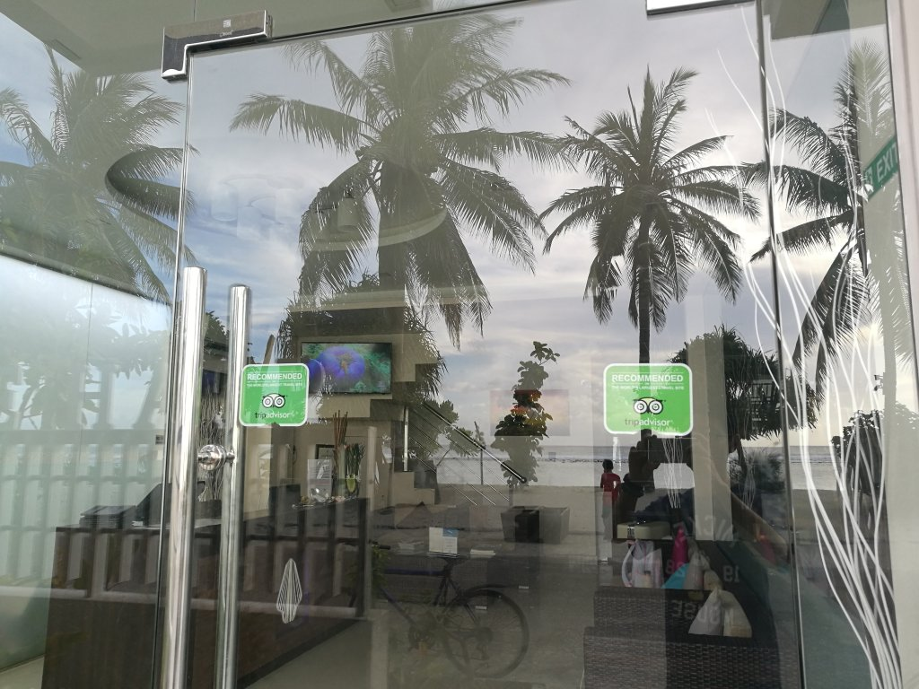 White harp beach maldives hulhumale foto 39 s reviews en for The family room hulhumale