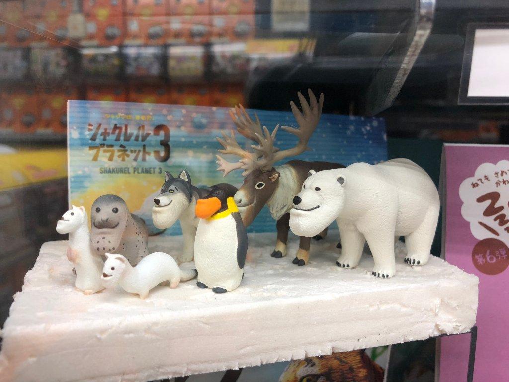 しゃくれたあごが魅力|シャクレルプラネットの動物12匹を紹介