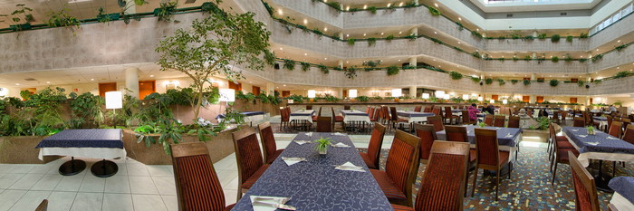 Panorama at the Holiday Inn Moscow Vinogradovo
