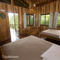 Tree Houses Hotel Costa Rica