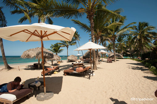 Beach at the Zoetry Agua Punta Cana (97937617)