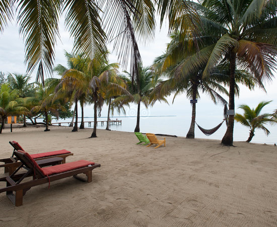 Coconut Row
