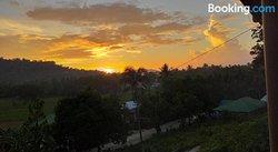 Barton Hill View