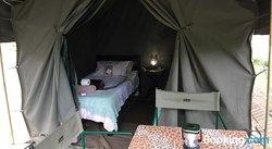 Kruger Park Tours Glamp