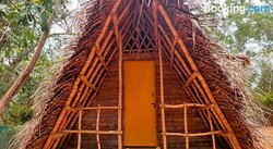 Rangshala Homestay