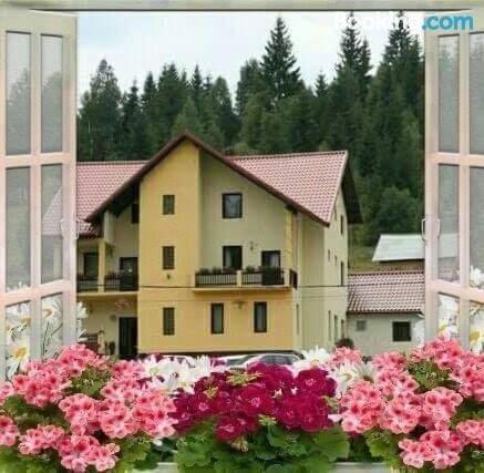 Flori de Bucovina