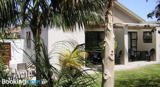 Kennington Palms