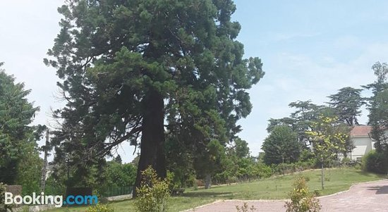 Gite Le Sequoia