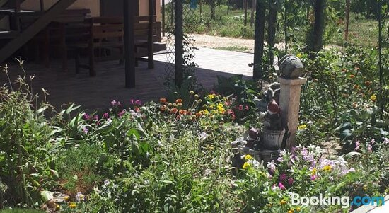 Guest House Sokol