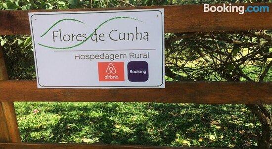 Flores de Cunha/Gypsophila