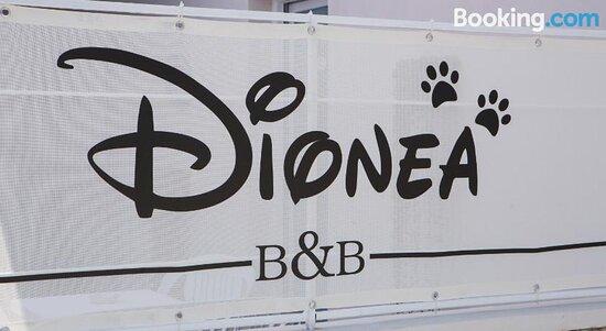 B&B Dionea