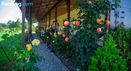 Guest House Mandarin