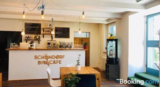 Pictures of Schondorf Hostel - Bratislava Photos - Tripadvisor