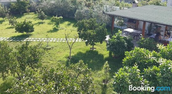 Garden - Ảnh của Hotel Vila C++, Berat - Tripadvisor