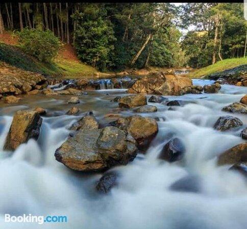 Foto's van Hacienda Mi Montanita – foto's Panama Stad - Tripadvisor