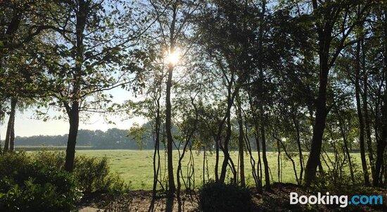 Pictures of B&B De Mersken - Ureterp Photos - Tripadvisor