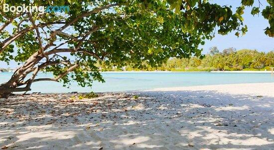 La Isla Tropica의 사진 - Guraidhoo의 사진 - 트립어드바이저