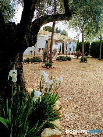 Pictures of La Casa del Abuelo Jose - Marmolejo Photos - Tripadvisor