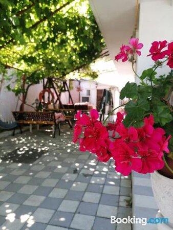 Vila Pescarus Mangaliaの画像 - コンスタンツァの写真 - トリップアドバイザー