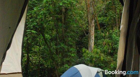 Nuestro Bosque I의 사진 - Tena의 사진 - 트립어드바이저