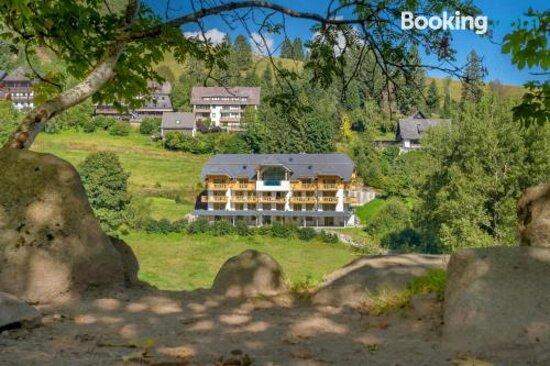 Pictures of SCHWARZENBACH - Apartments & Rooftop Pool - Feldberg Photos - Tripadvisor