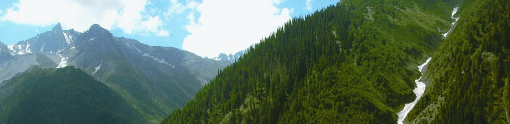 Kashmir Tourism (2020): Best Of Kashmir, India