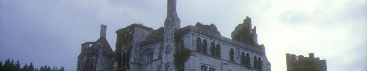 Dunboy Castle and Puxley Mansion