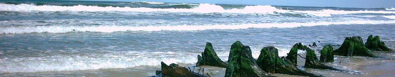 Beaches at Cabo Polonio