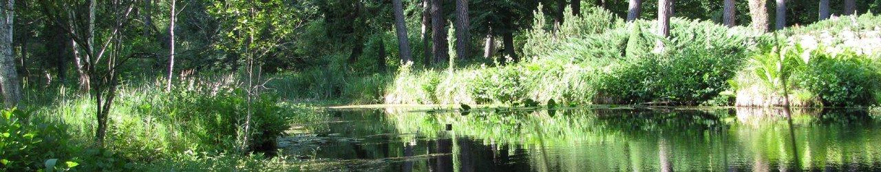 Lesne Arboretum Warmii i Mazur
