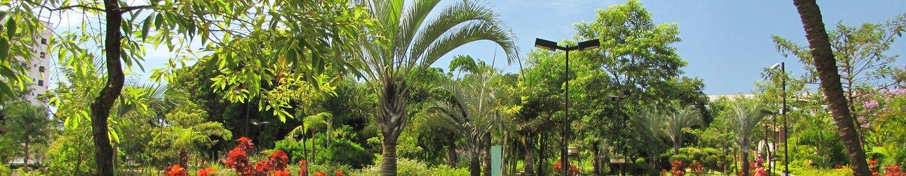 Parque Municipal Engenheiro Salvador Arena