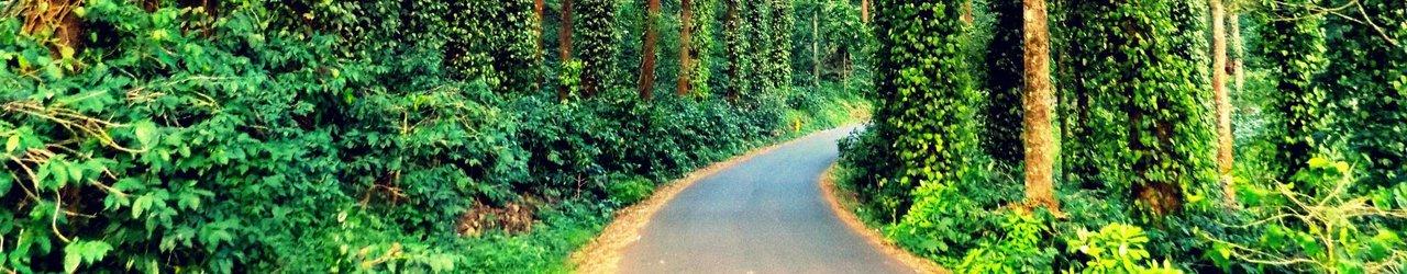 32-km Loop Road