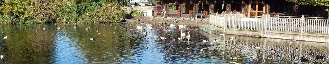 WWT Martin Mere Wetland Centre