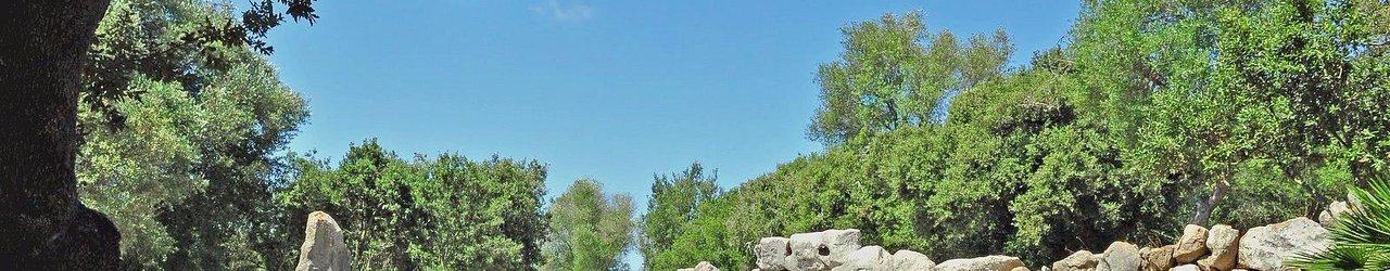 Talaiots Capocorb Vell