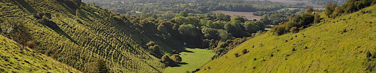 Wye National Nature Reserve