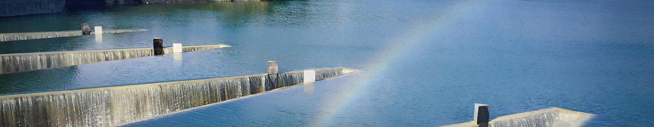 Carp Pond Water Reservoir Scenic Lookouts
