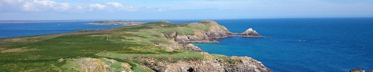 Saltee Islands
