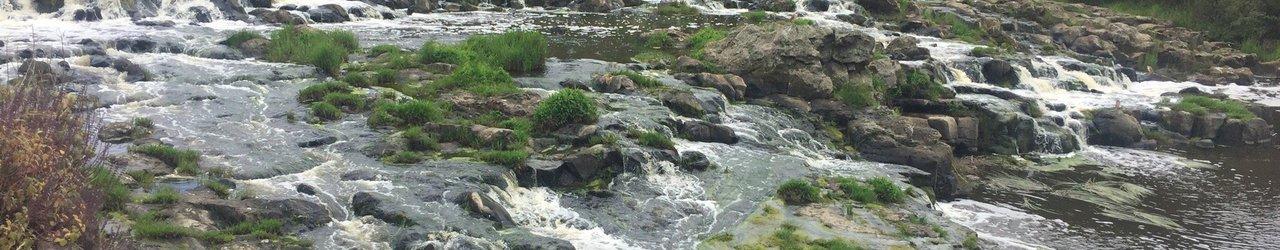 Buckley Falls